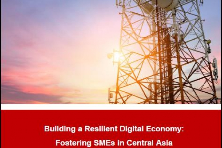 Building a resilient digital economy